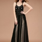 Black_In_Chiffon_4b83ebc047fd0.jpg (55 KB)